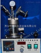 北京小型磁力攪拌式高壓反應釜