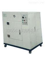 BWX-6微波真空滅菌烘箱