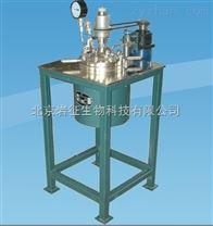 供应螺带搅拌反应釜——北京昌平岩征生物科技有限公司