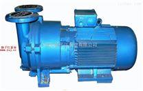 真空泵:SKA系列水環式真空泵