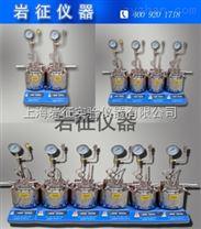 供應上海50ml多功能平行反應裝置,微型平行高壓反應釜,平行合成反應儀