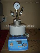 武汉微型钛材质高压反应釜
