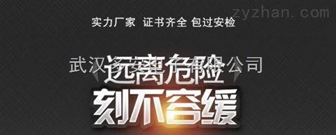武汉硫化氢气体检测报警器、硫化氢气体报警器价格实惠,厂家直销
